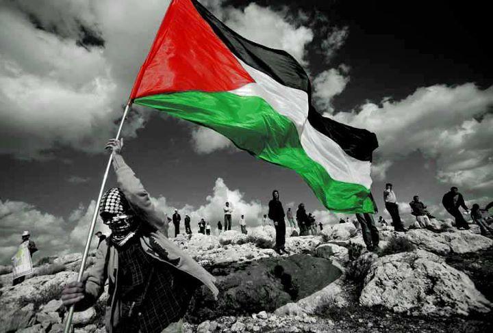 ۞ بحث عن فلسطين ۞ 4ec1a250ce.jpg
