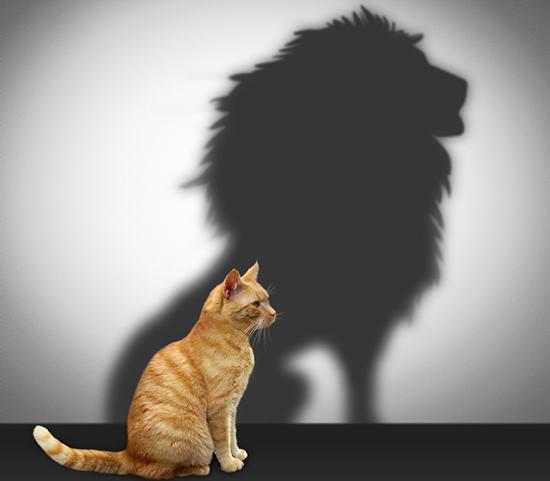 اقوال مأثورة عن الشجاعة