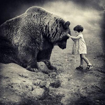 Image result for صور الشجاعة