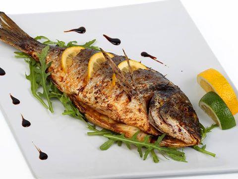 بديل الأسماك فى التغذية