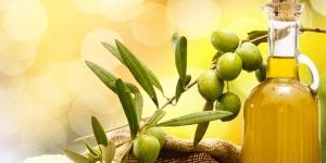 فوائد الزيتون في علاج فقر الدم وتحسين الذاكرة