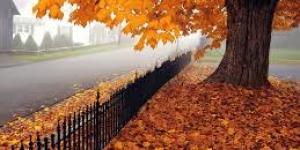 أضرار فصل الخريف