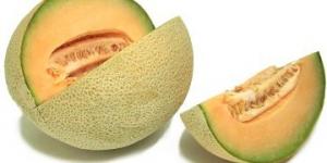 الفائدة الغذائية للشمام cantaloupe