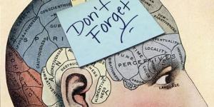 معلومة رائعة عن الذاكرة