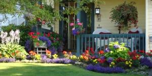 مصطلحات انجليزية عن الحديقة