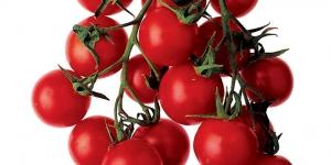 افضل طريقة لحفظ حبات الطماطم