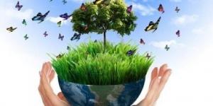 مصطلحات عن البيئة بالانجليزية