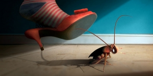 كيفية التخلص من الصراصير فى المنزل