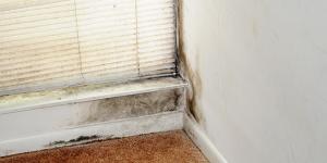 كيفية التخلص من الرطوبة فى منزلك