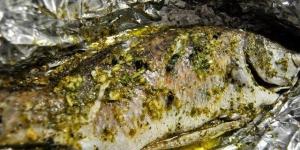 طريقة عمل سمك دنيس مشوى فى الزيت