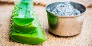 فائدة عصير الالوفيرا للشعر