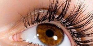 كيف تتحرك العينين
