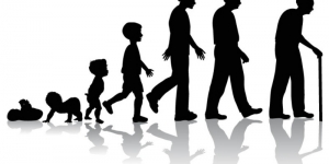 كيفية التطور مع متغيرات الحياة