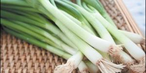فوائد البصل الاخضر للبشرة