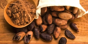 فوائد الكاكاو في التخلص من معدلات الكوليسترول المرتفعة