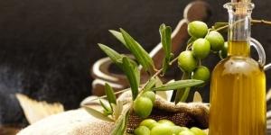 القيمة الغذائية لزيت الزيتون