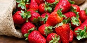 فوائد الفراولة للتخسيس
